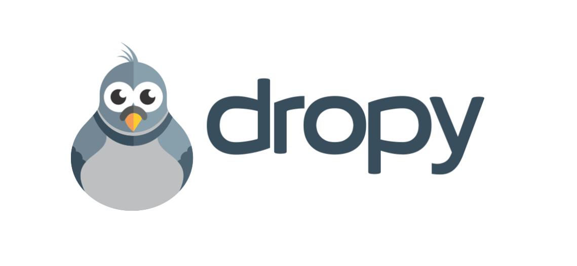 logo Dropy